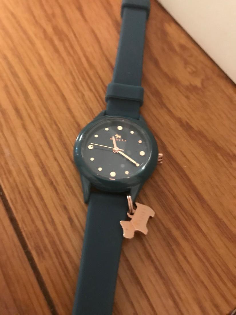 My new super cool Radleywatch